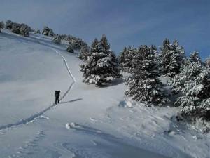 Traversée en raquettes, plateau du Vercors avec Détours en Montagne