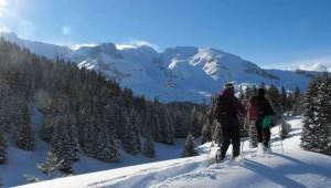 fondecran-hiver-site