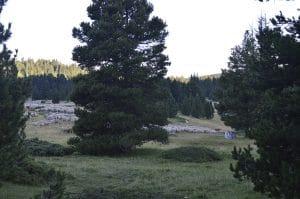 Traversée du Vercors avec Détours en Montagne