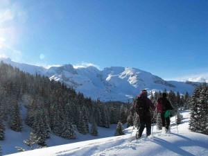neige-devoluy-10barges