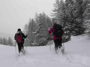 neige-devoluy-3baudinard